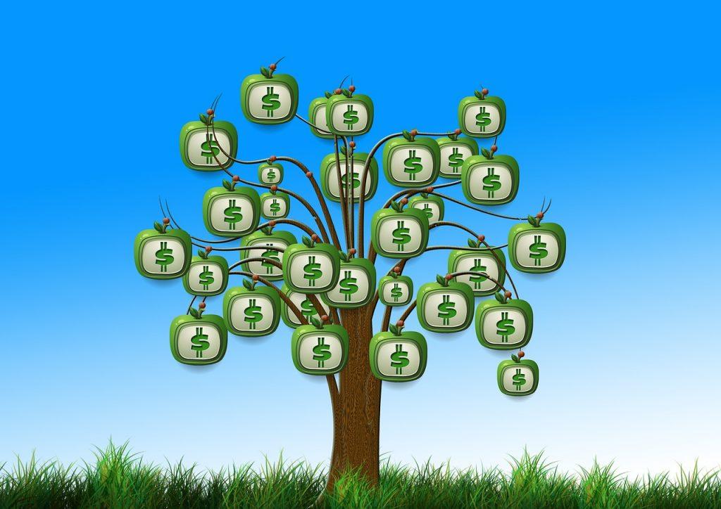 boom-met-geld
